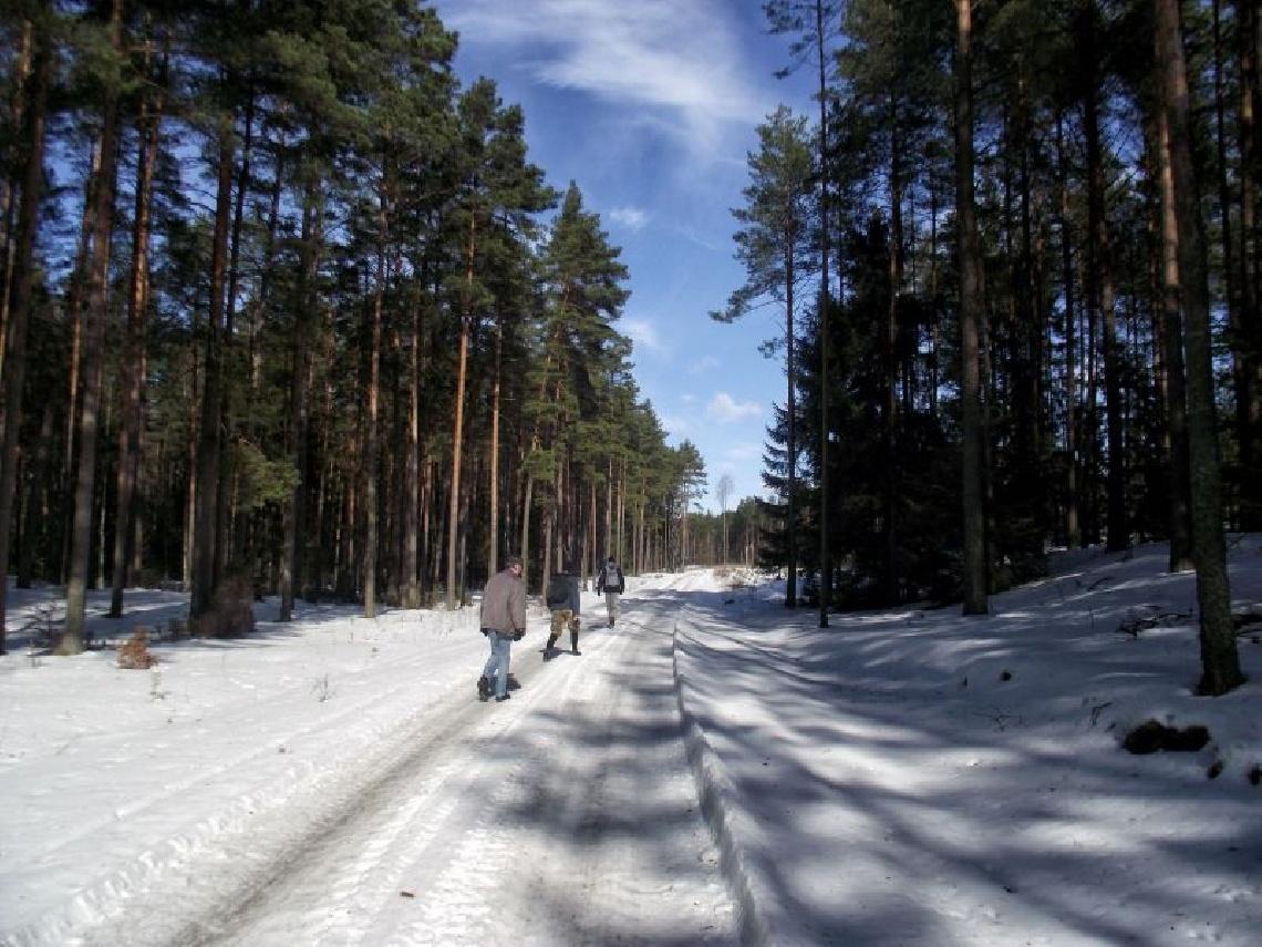 Zimowy Rajd pieszy Szlakiem Pięciu Jezior