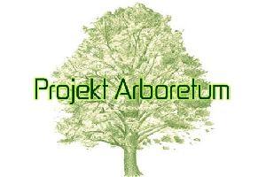 VI Projekt Arboretum czyli świat muzyki hybrydowej